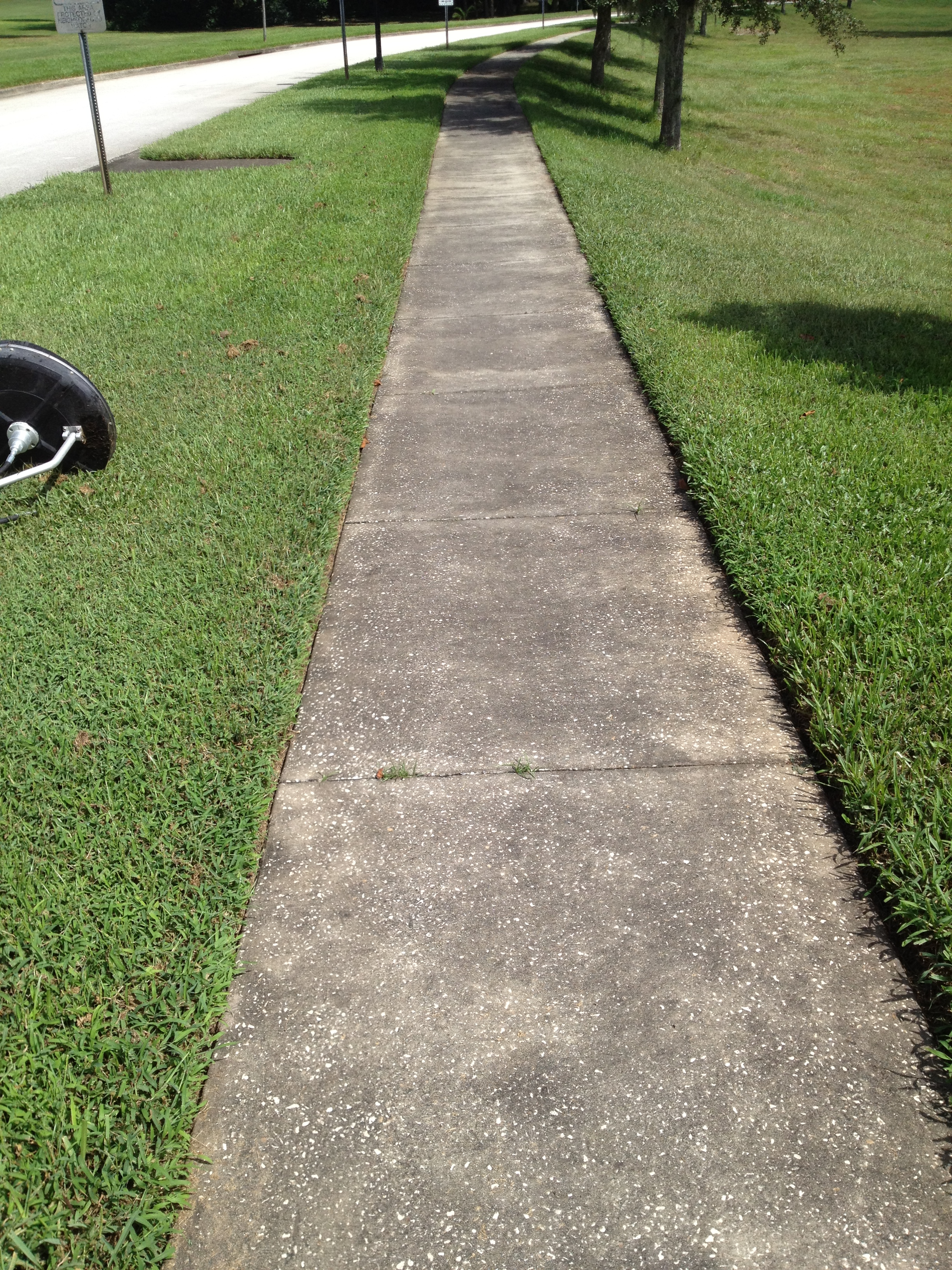 Sidewalk Before Pressure Wash