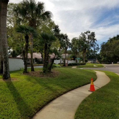 Sidewalk Cleaning