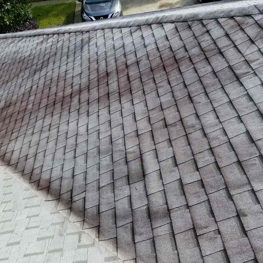 Roof Cleaning Before