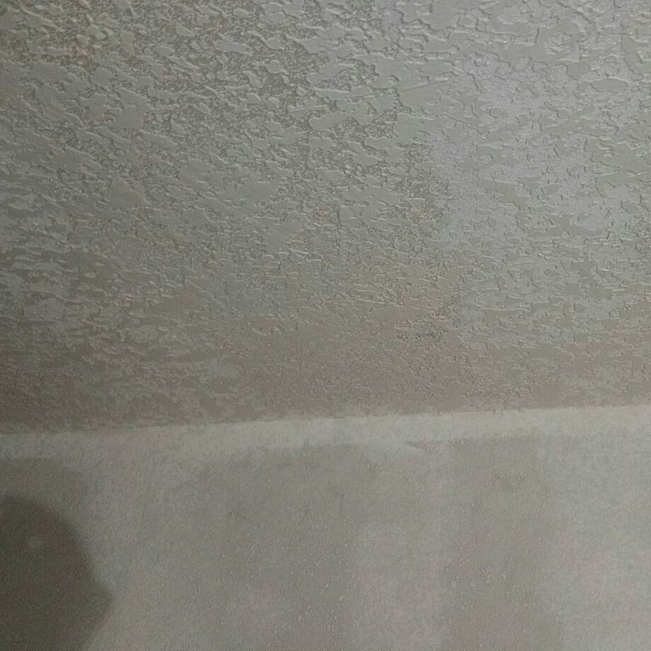 Ceiling Repair - Before